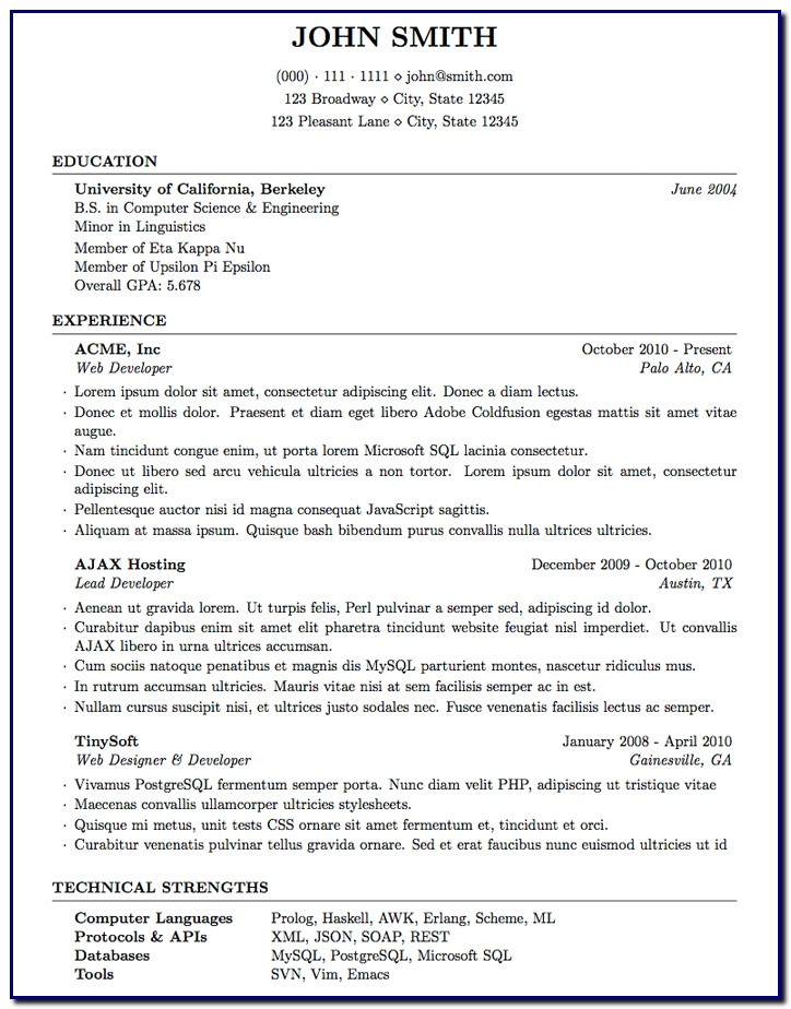 Professional Cv Template Computer Science