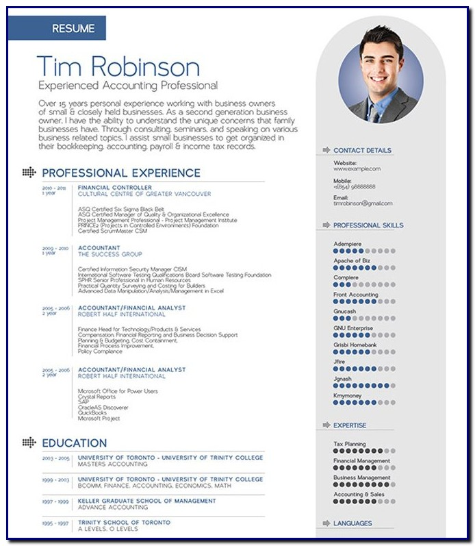 Professional Cv Template Doc