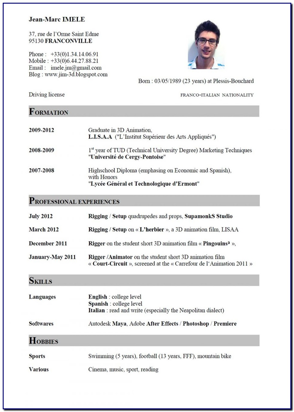 Professional Cv Template English