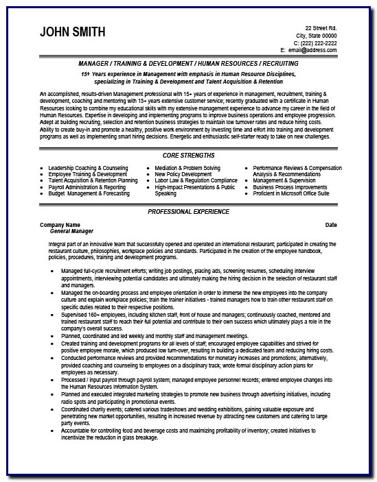 Professional Cv Template For General Manager