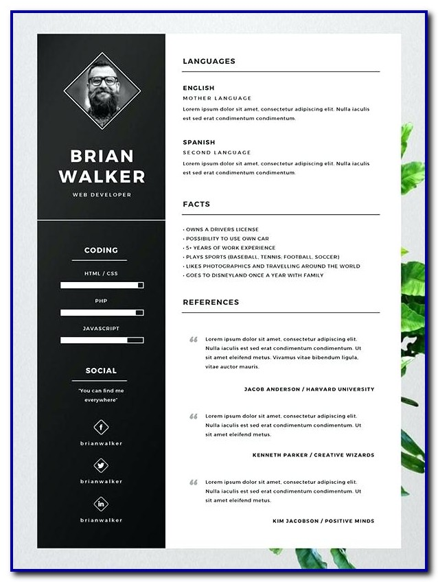 Best Free Resume Templates Microsoft Word