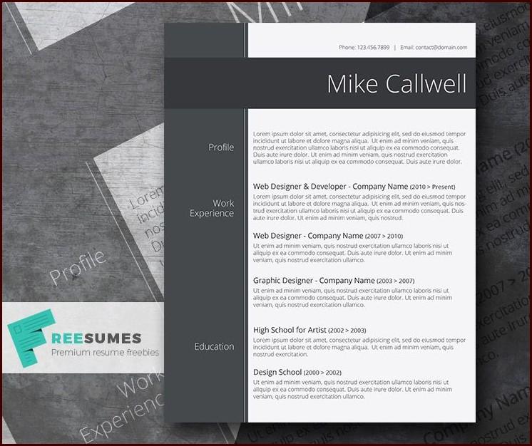 Free Stylish Resume Templates Word