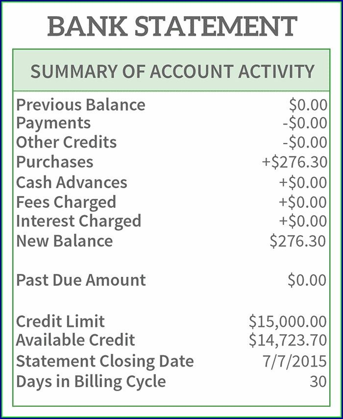 Navy Federal Bank Statement Template