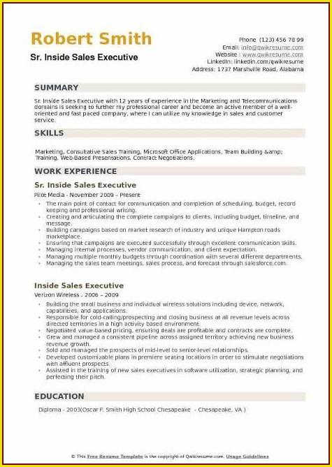 Resume Template For Sales Executive