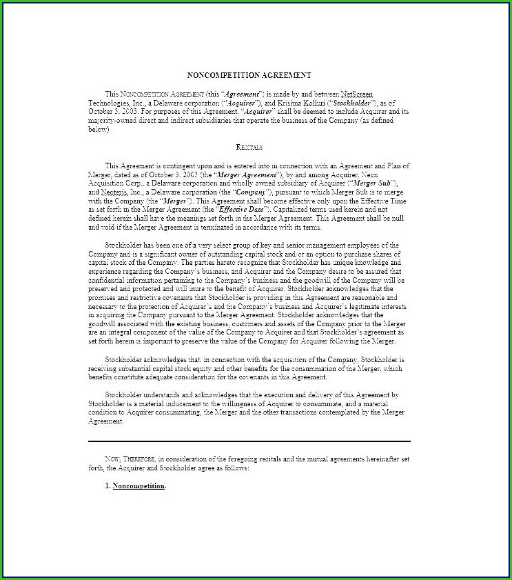 Shareholder Loan Agreement Template Australia