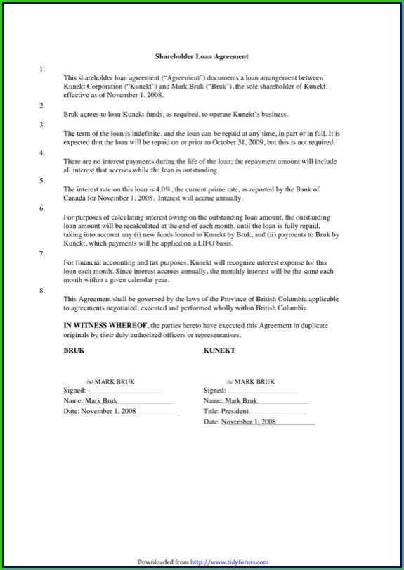 Shareholder Loan Agreement Template