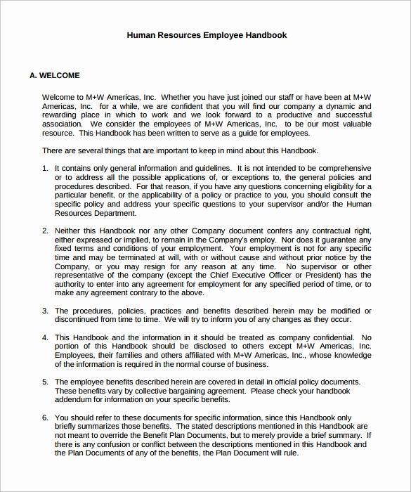 Employee Handbook Addendum Template