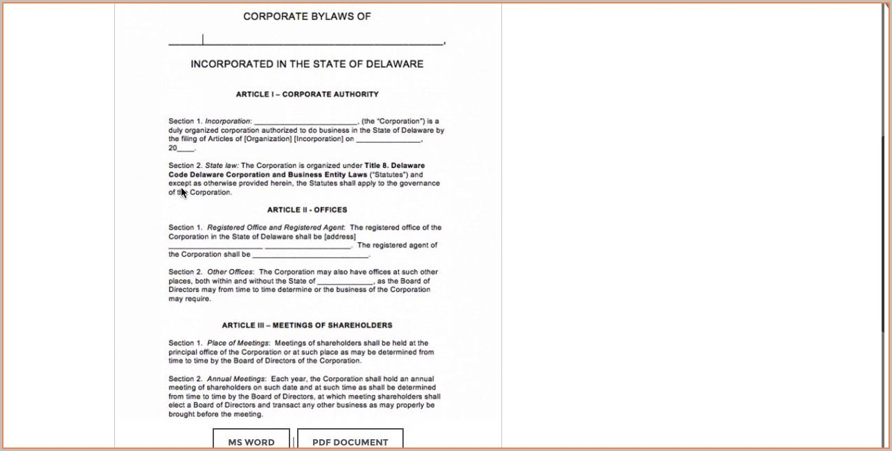 Business Company Bylaws Template