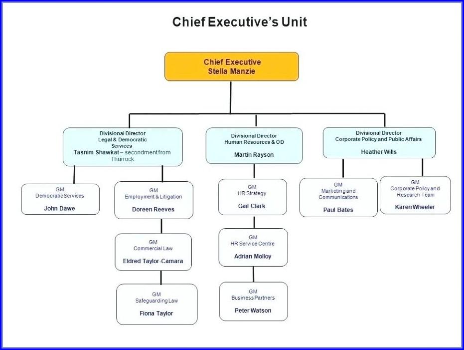 Business Organizational Chart Template Word