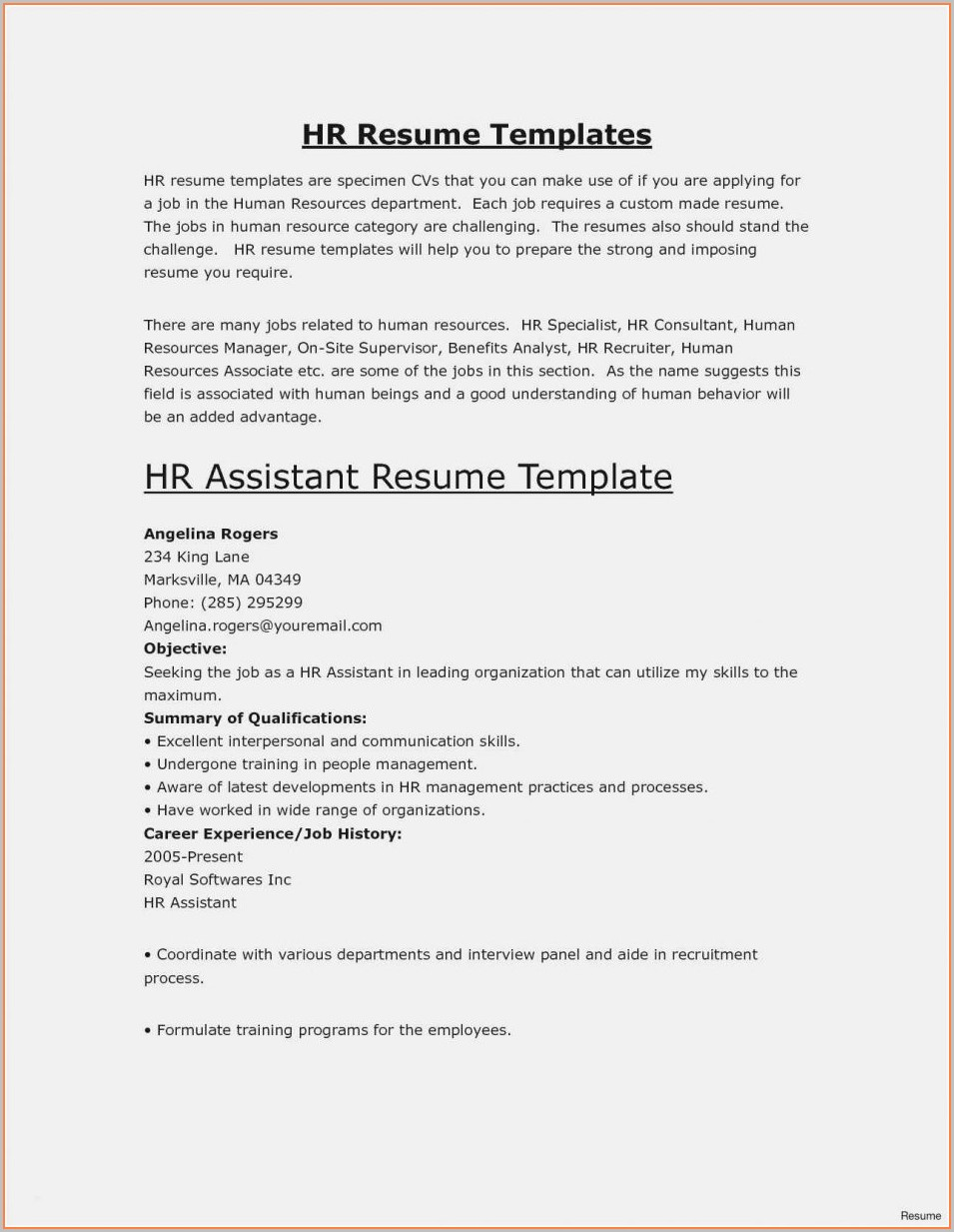 Elegant Resume Template Free Download