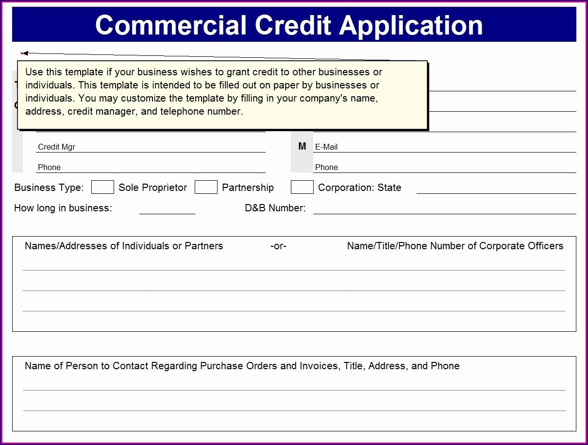 Excel Business Credit Application Form Template