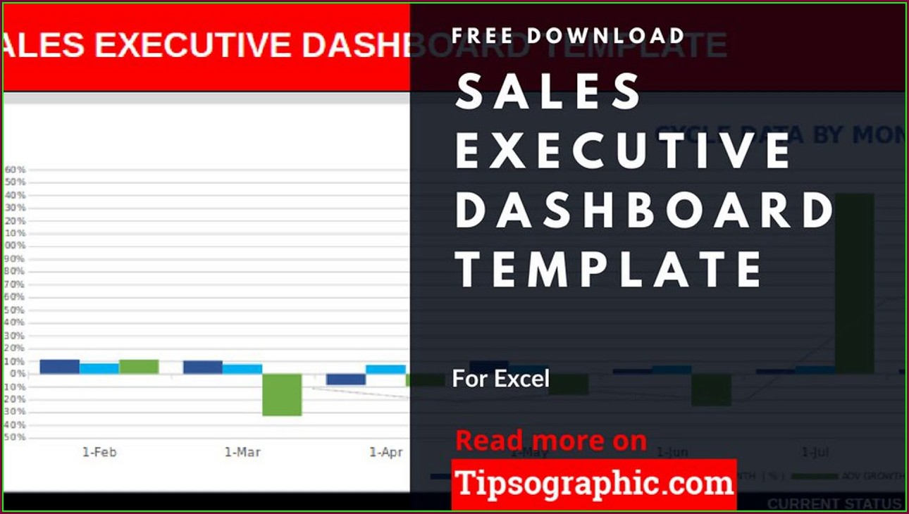 Executive Dashboard Template Free