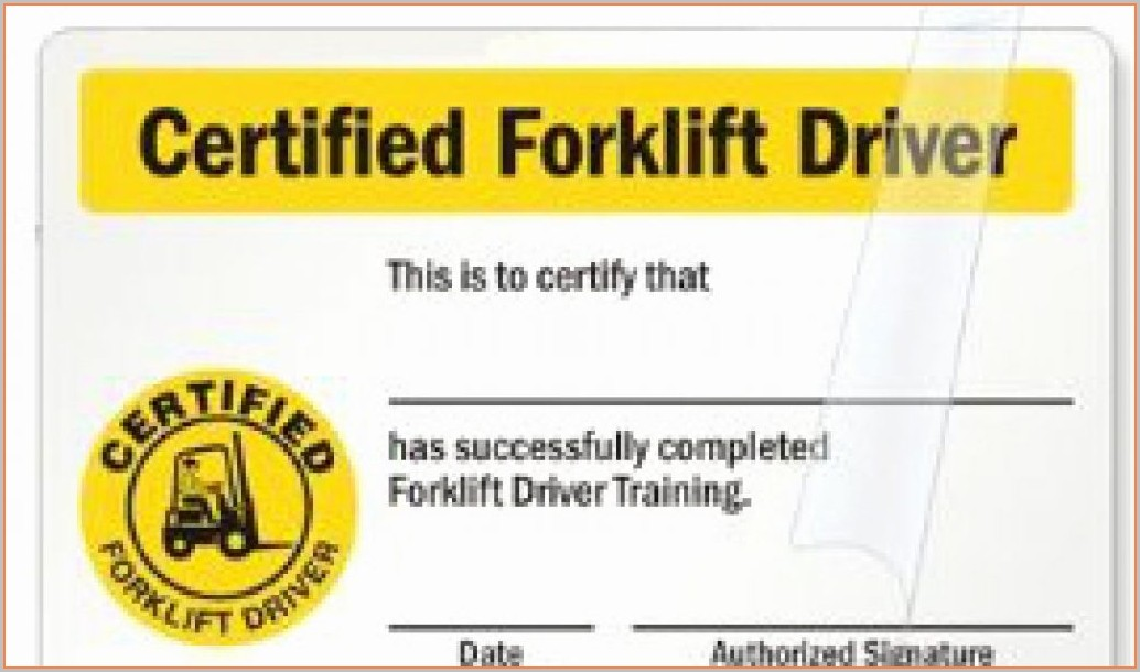 Forklift License Template