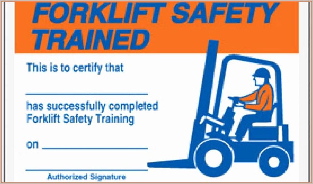 Free Printable Forklift License Template