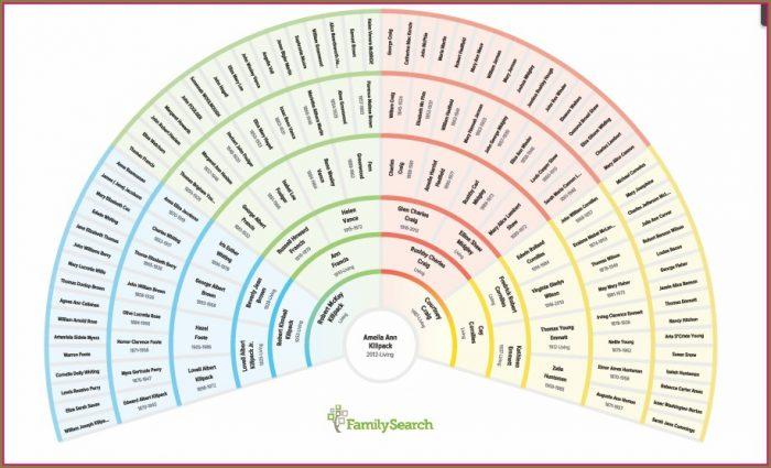 Genealogy Fan Chart Template