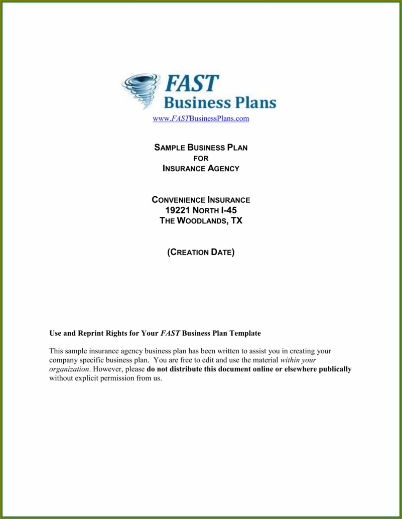 Insurance Business Plan Template