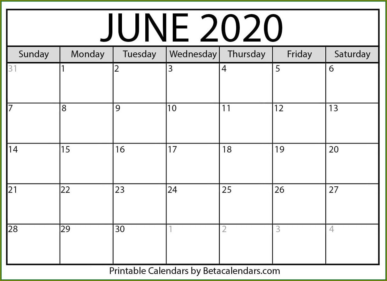 Large Print Free 2020 Calendar Template