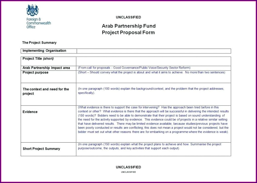 Ngo Project Proposal Template Word