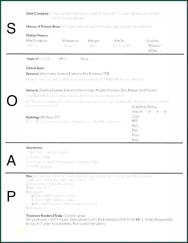 School Counseling Case Notes Template