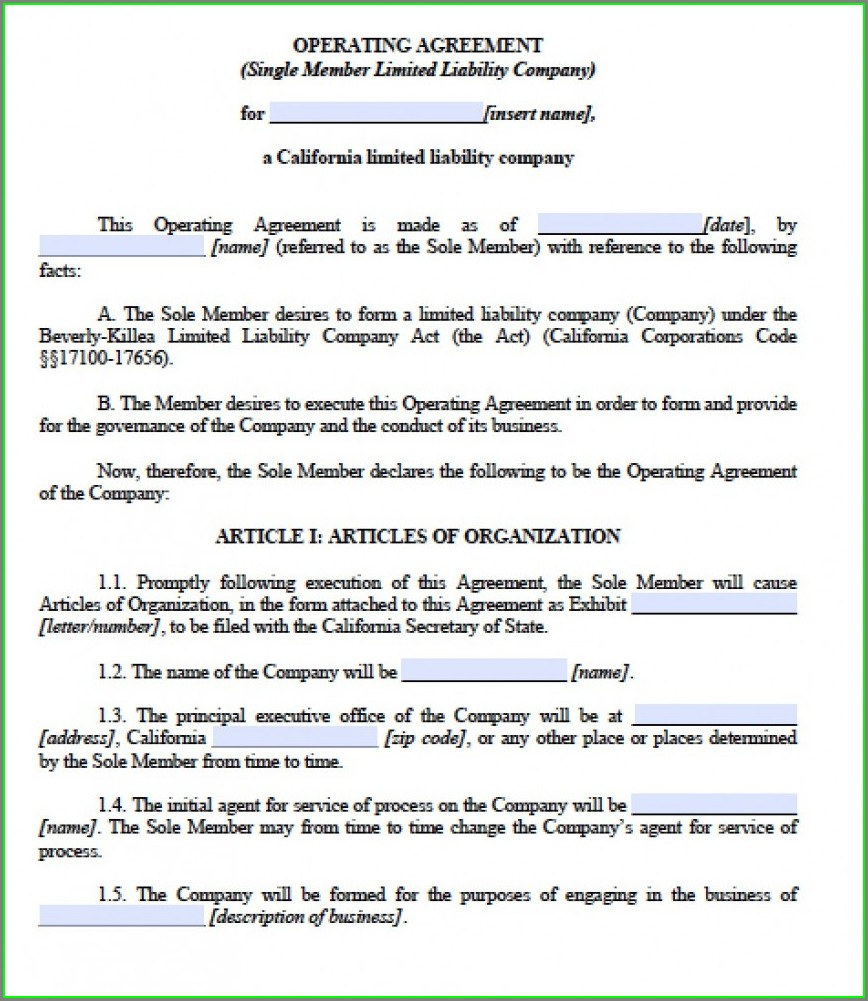 Single Member Llc Operating Agreement Template California