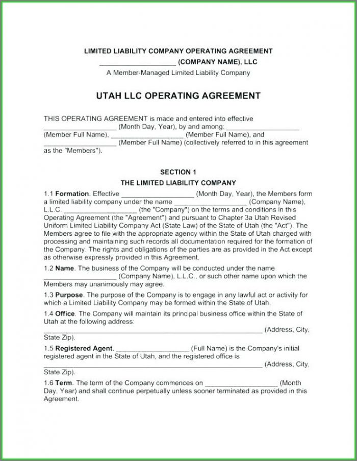 Single Member Llc Operating Agreement Template Florida