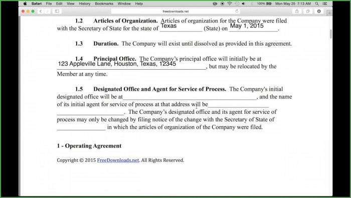 Single Member Llc Operating Agreement Template Free
