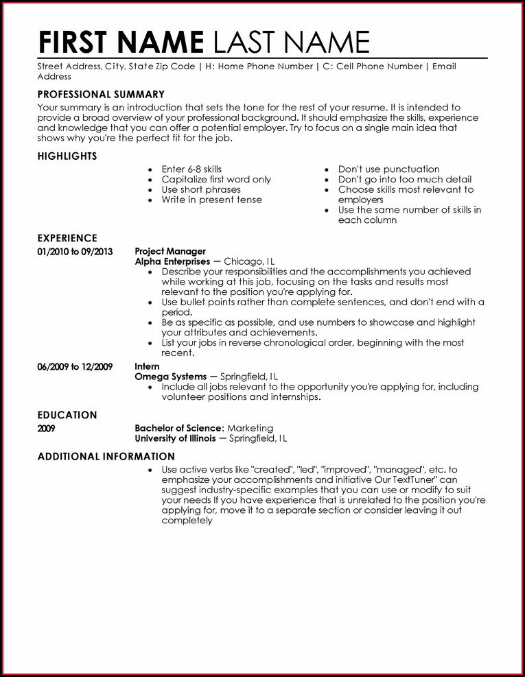 Beginner Examples Of Professional Resumes