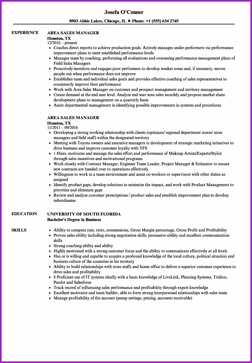 Best Resume Format For Area Sales Manager In India