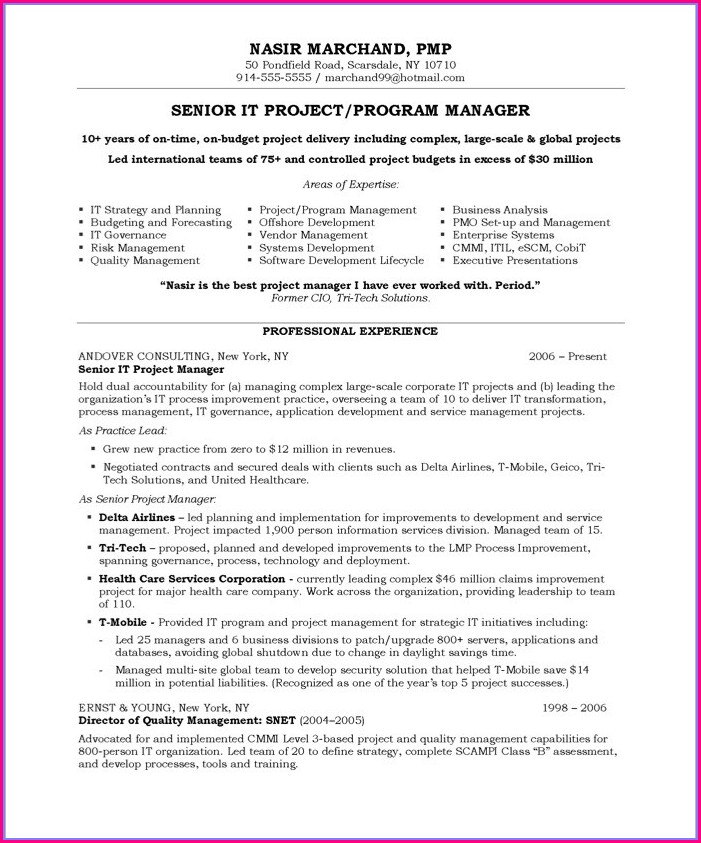 Best Resume Format For Project Managers