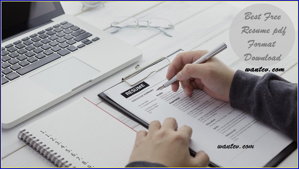 Best Resume Format Free Download Pdf