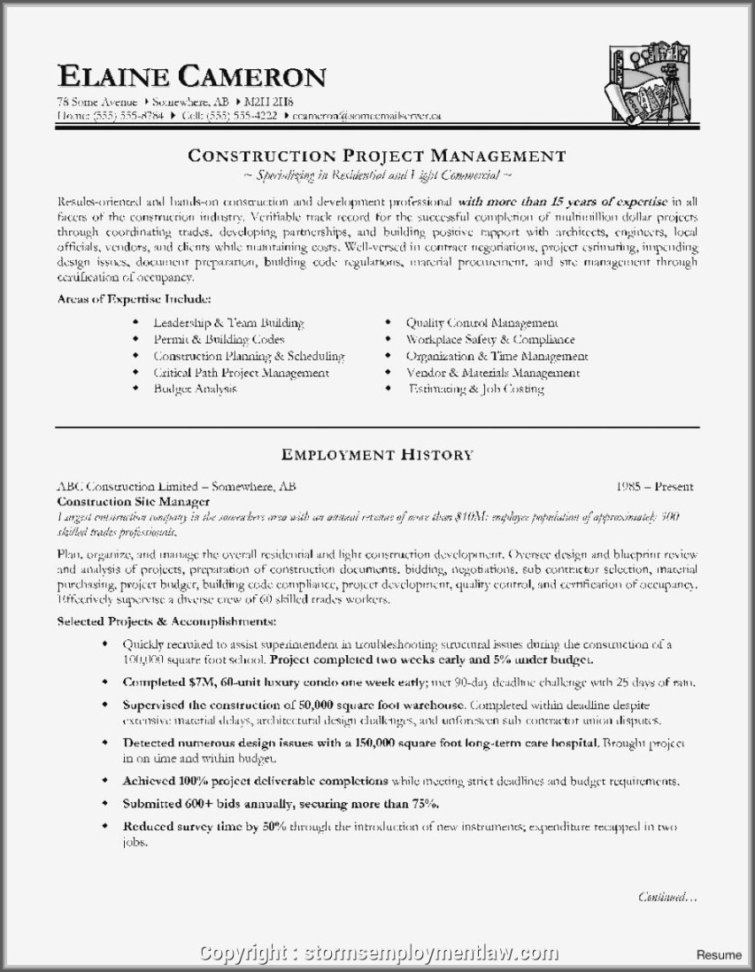 Best Sample Resume For Construction Project Manager