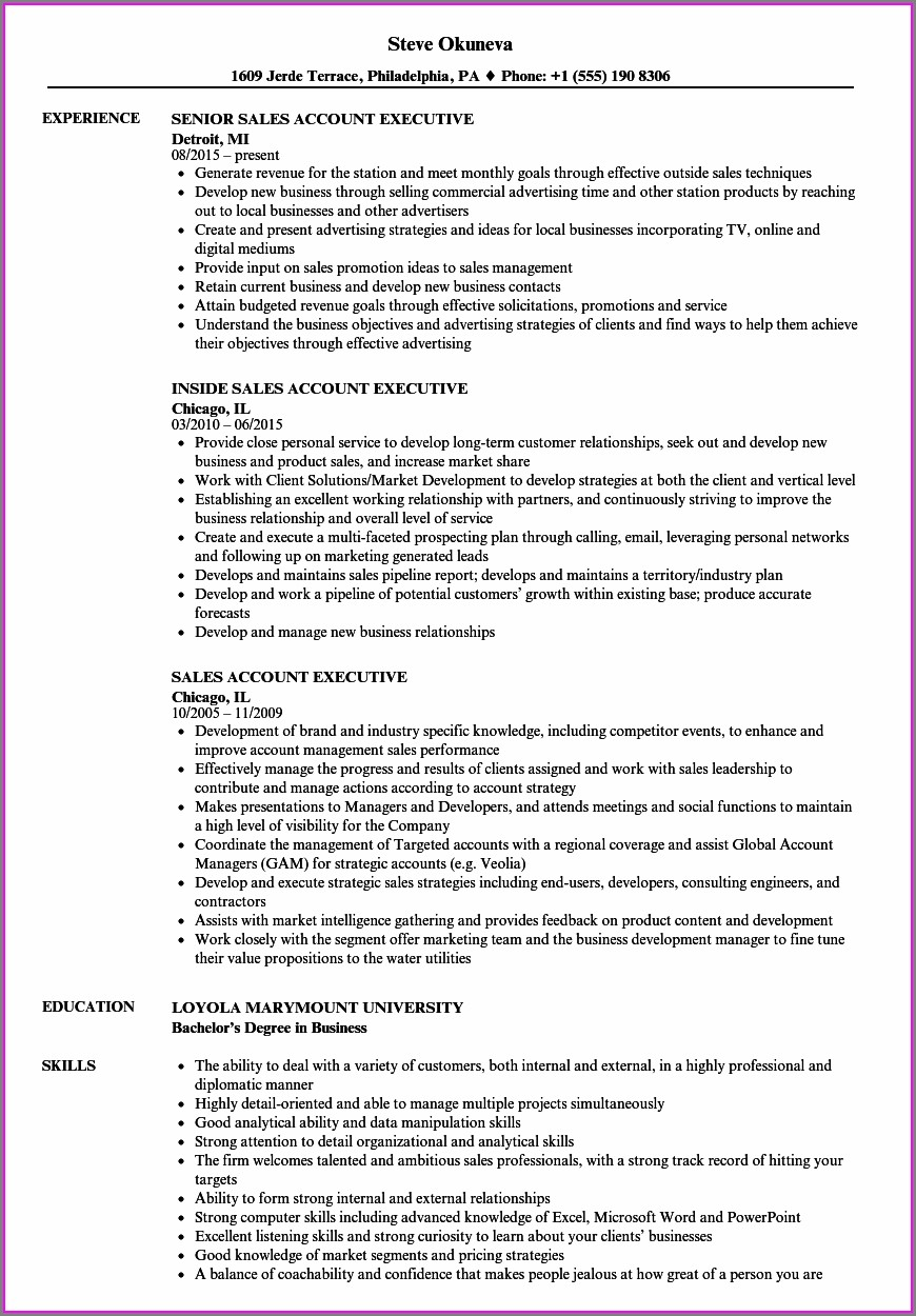 Curriculum Vitae Format For Accounts Executive