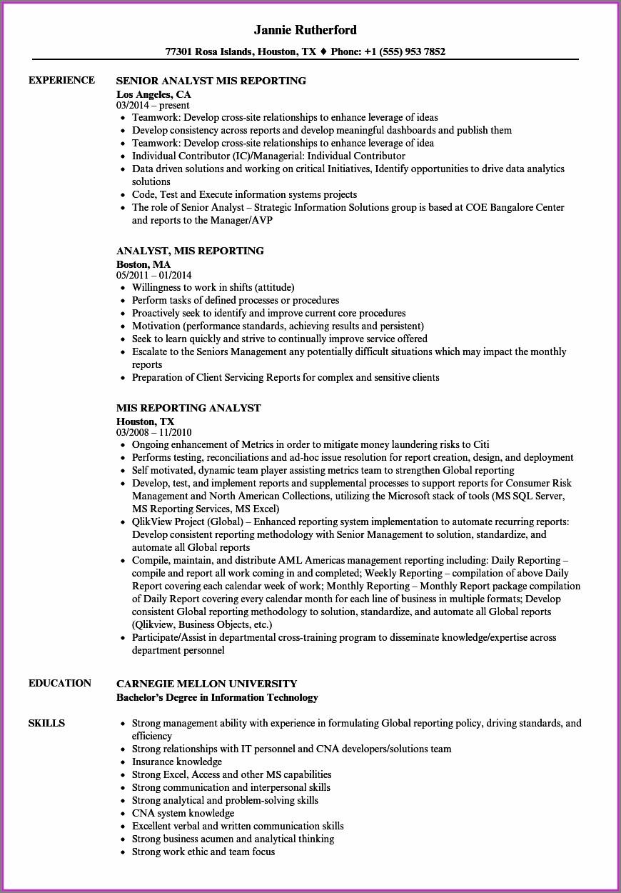 Curriculum Vitae Format For Mis Executive