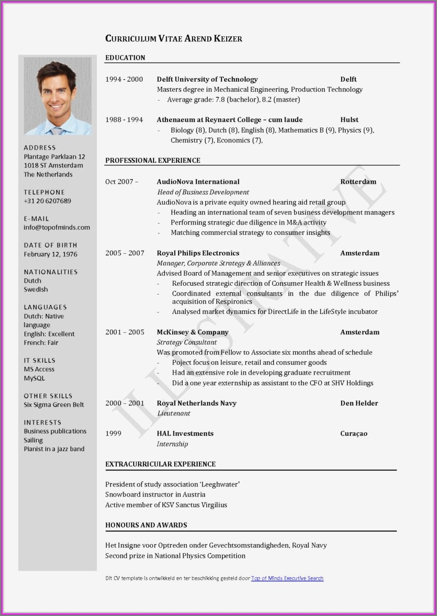 Curriculum Vitae Sample For Marketing Executive