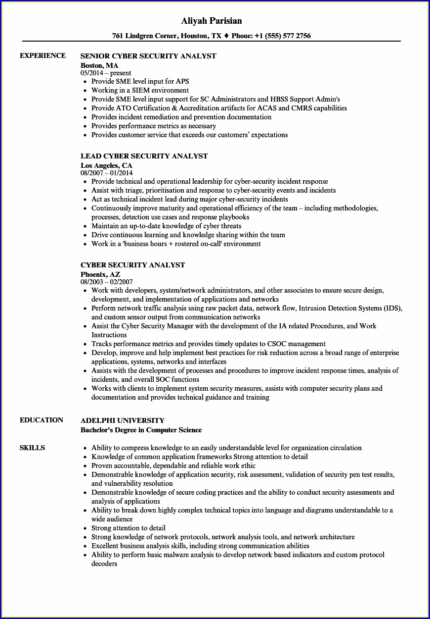 Cyber Security Intern Resume Sample