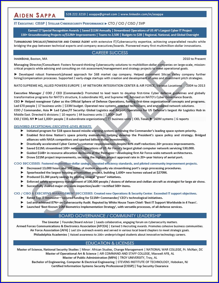 Cyber Security Sales Resume Sample