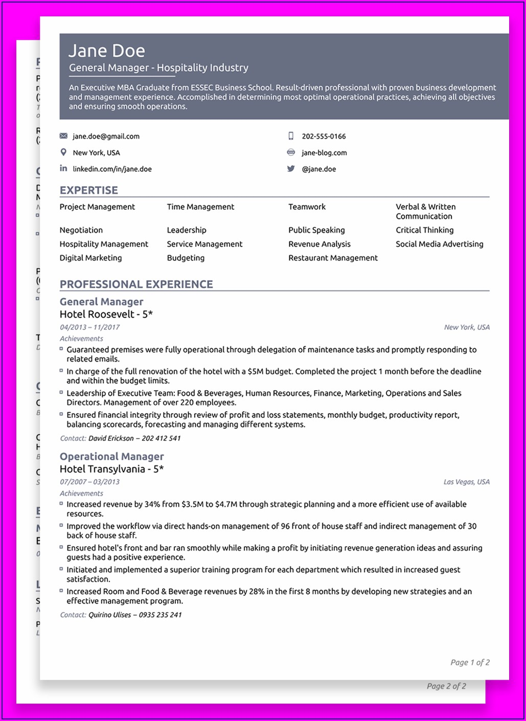 Downloadable Free Executive Resume Templates