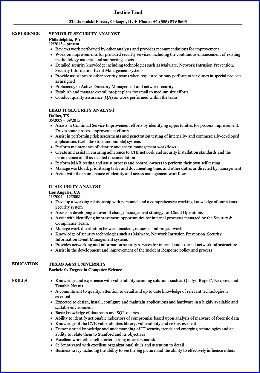Entry Level Cyber Security Analyst Resume Sample