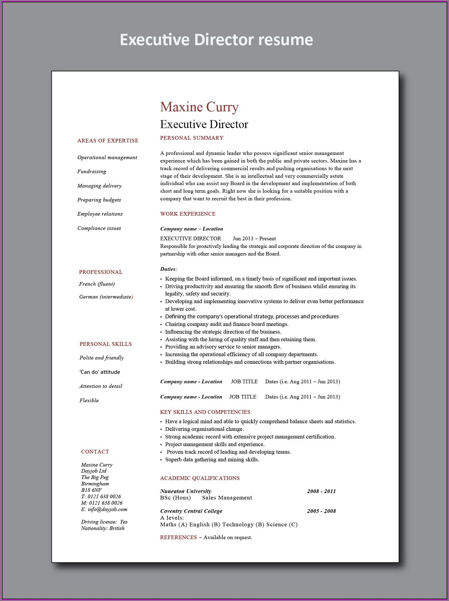 Executive Functional Resume Example