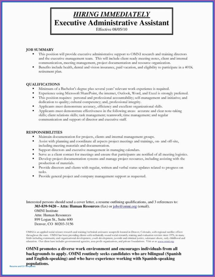 Professional it resume writing services