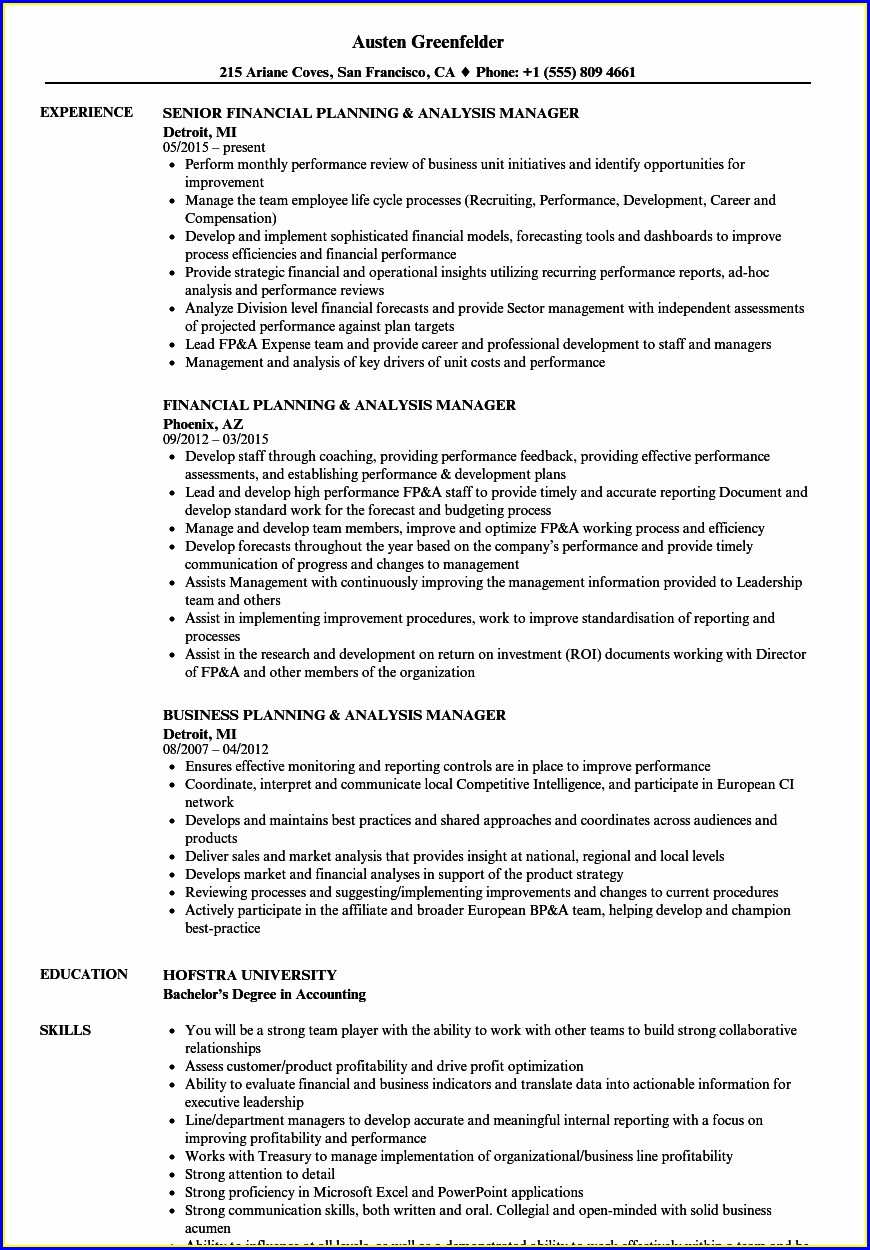 Financial Planning Resume Templates