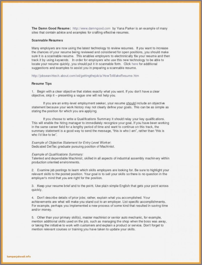 Free Fill In The Blank Resume Pdf