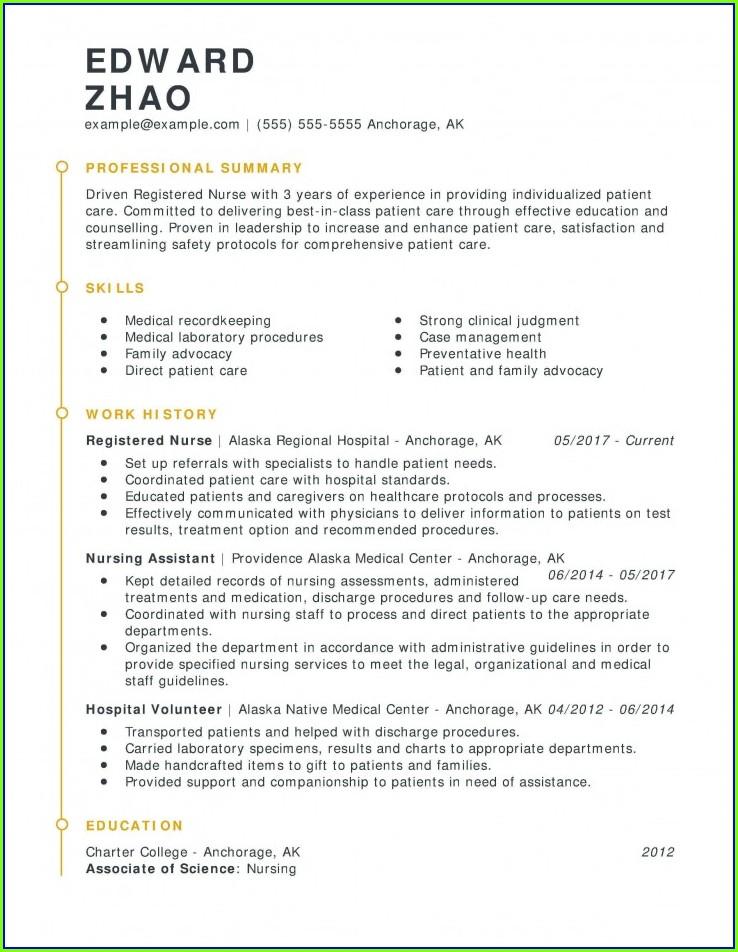 Free Online Nursing Resume Templates