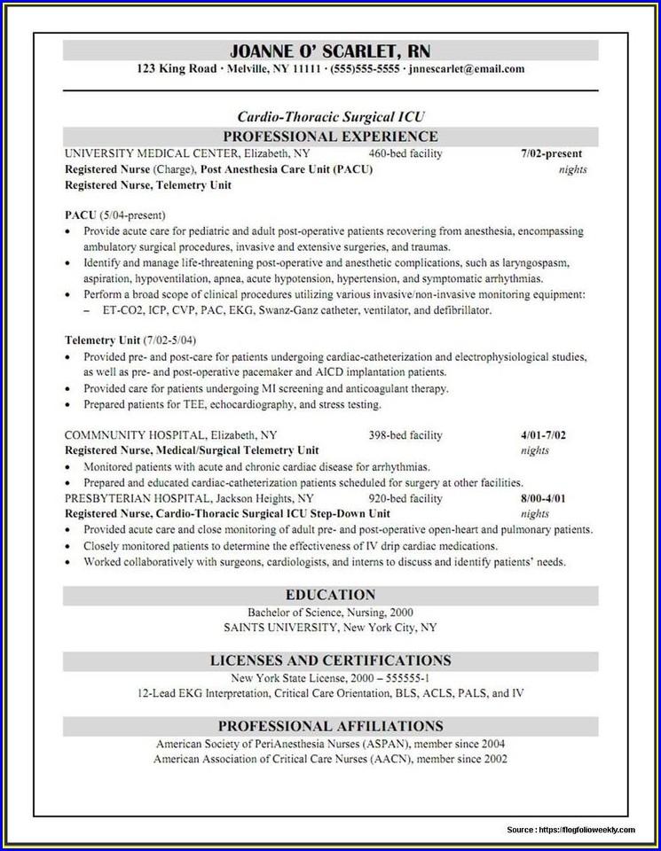 Free Resume Builder For Nurses