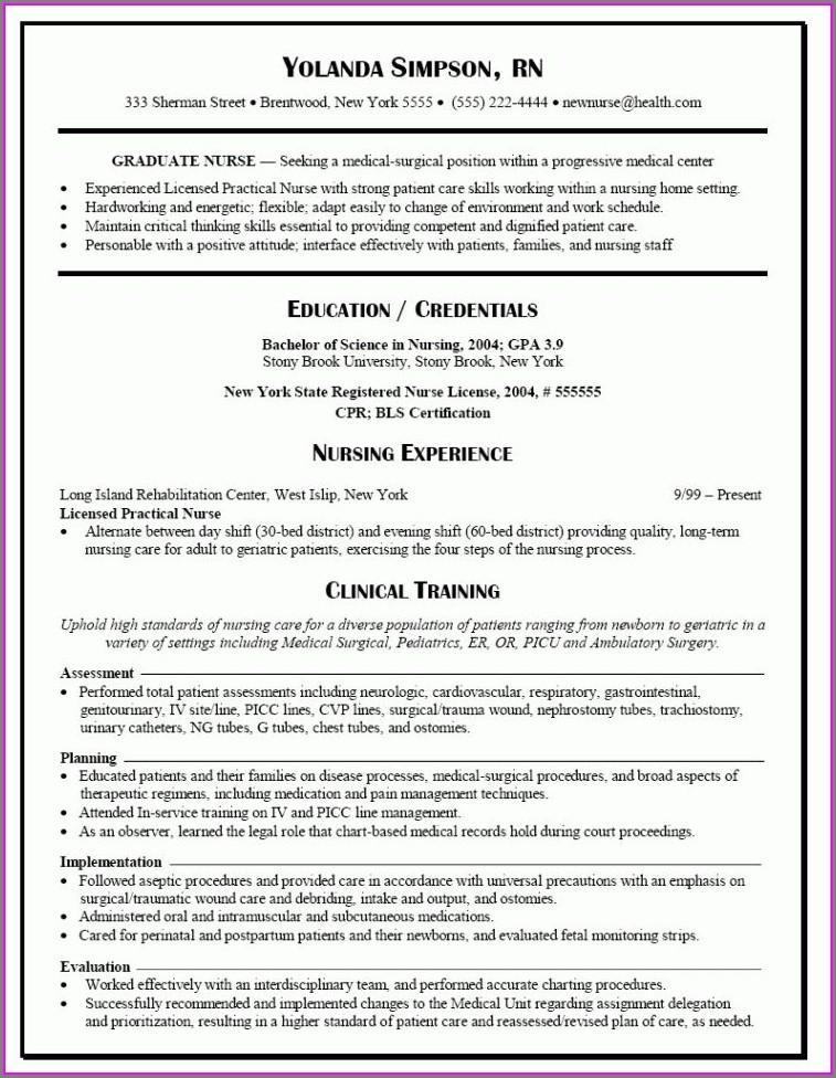Free Resume Template For Nurses