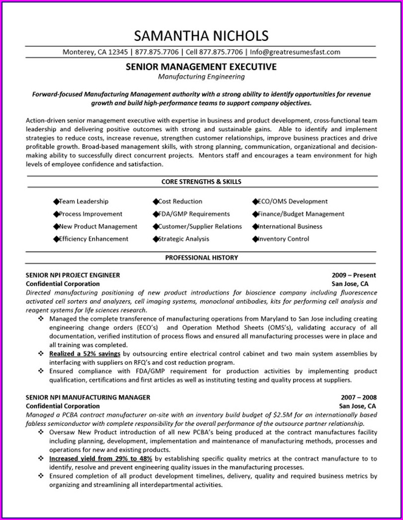 Free Senior Executive Resume Templates