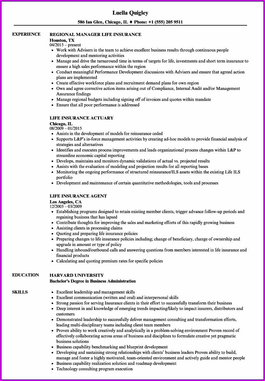 Life Insurance Agent Resume Objective