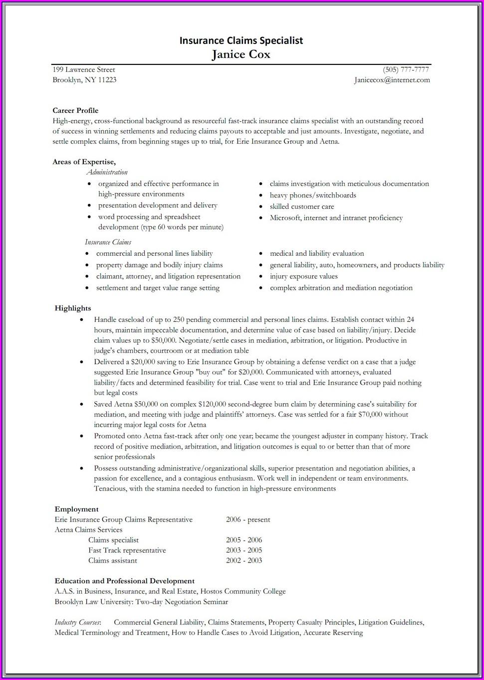Life Insurance Agent Resume Sample