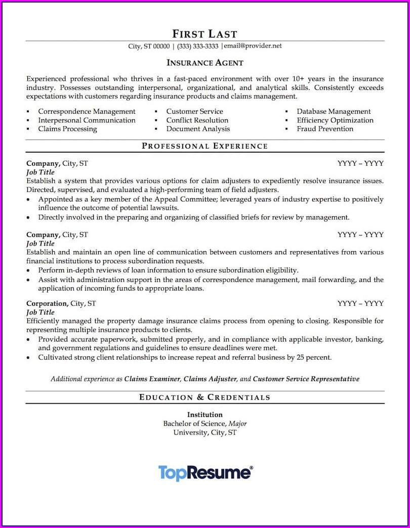 Life Insurance Agent Skills On Resume