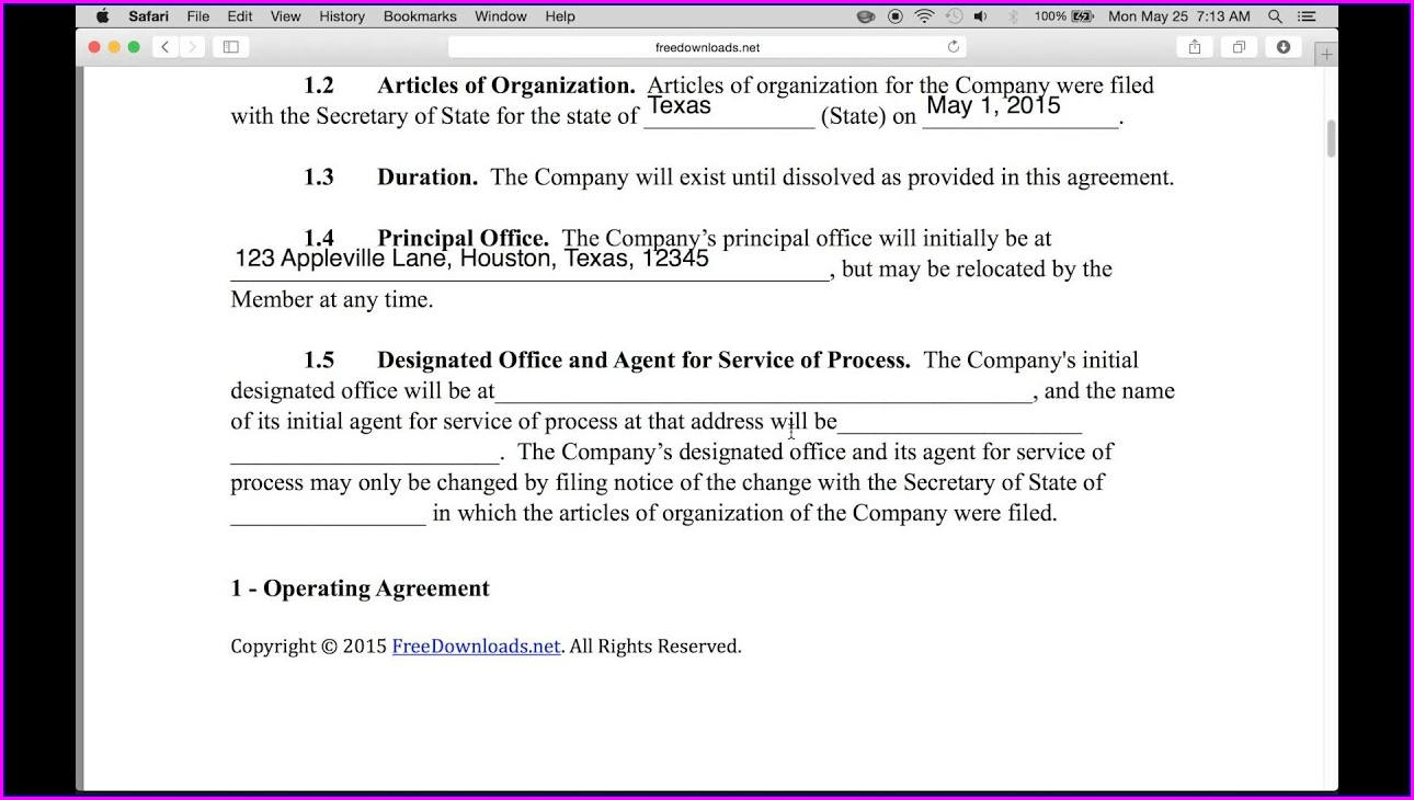 Partnership Llc Operating Agreement Template